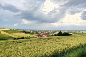 Monferrato e la bassa Val Bormida